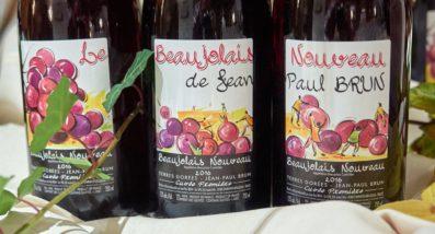 Beaujolais nouveau Terres Dorées de Jean-Paul Brun